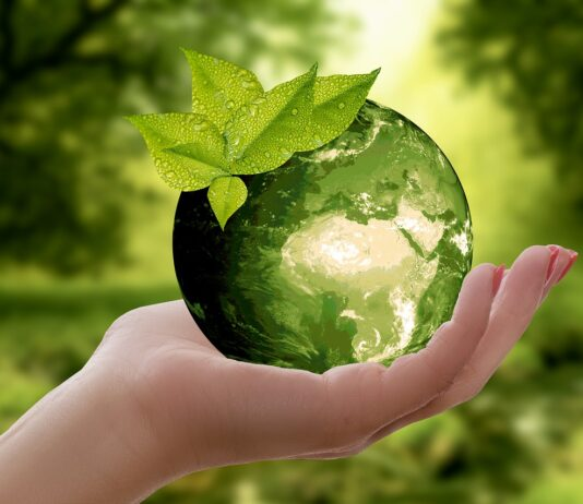 Real-estate-consumers-want-more-sustainability-as-earth-day-approaches