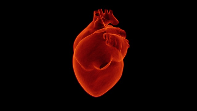 FDA_Approves_Heart_Pump_For_Treatment_In_COVID_19_Patients